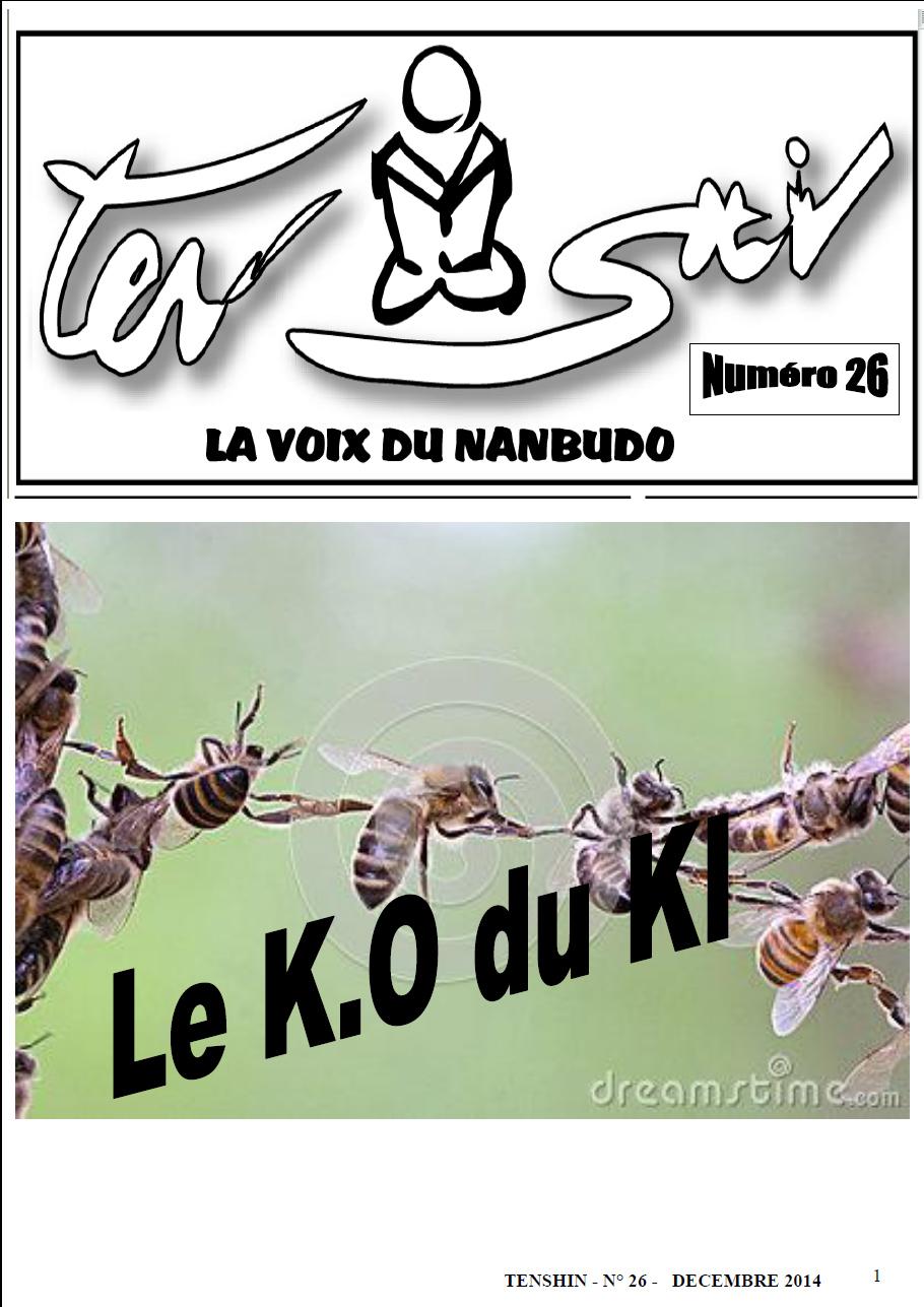 Tenshin n°26 : Le KO du KI