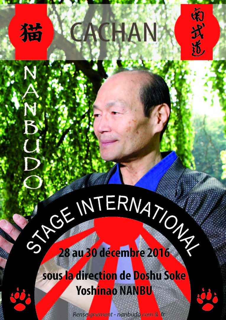 Stage International CACHAN