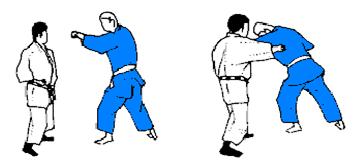 Judo Tsuki.png
